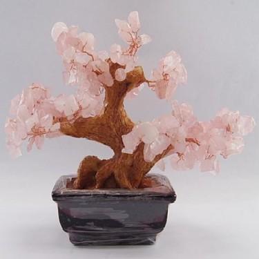 Copacei feng shui cuart roz