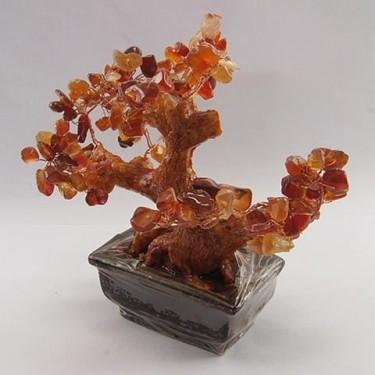 Copacei feng shui agat rosu
